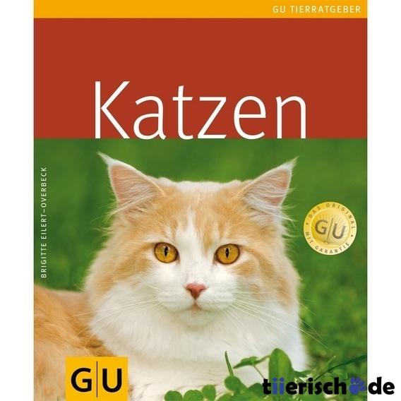 katzenbuch Beste Bilder: