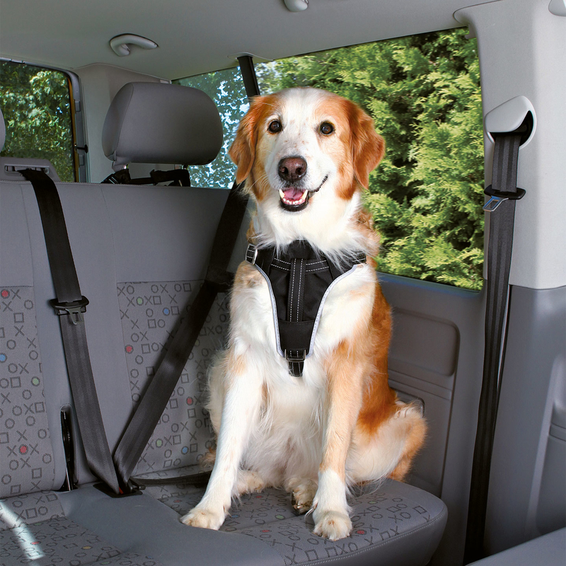 trixie auto sicherheitsgeschirr hund dog protect 12855 von. Black Bedroom Furniture Sets. Home Design Ideas