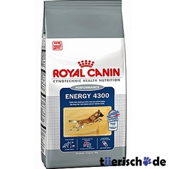 Royal Canin Energy 4300 Hundefutter