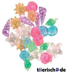 24 Aquarium-Kristallmuscheln