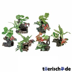 6 Baumstmme mit Seidenpflanzen frs Aquarium