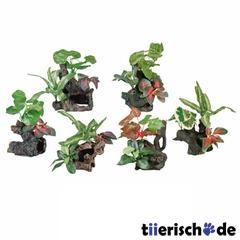 6 Baumstämme mit Seidenpflanzen fürs Aquarium