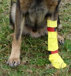 DogGusti Hunde-Gummistiefel