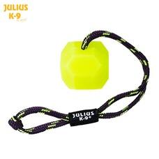 Julius K9 Leuchtball IDC