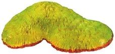 Aquarium Deko Koralle grüngelb