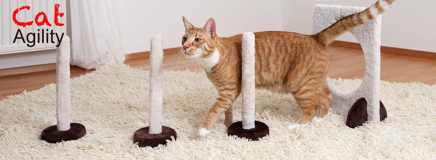 Cat Agility Zubehör