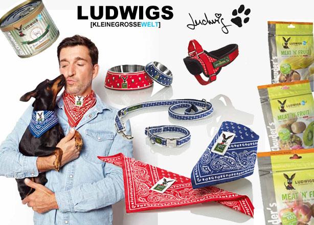 Ludwigswelt Hund