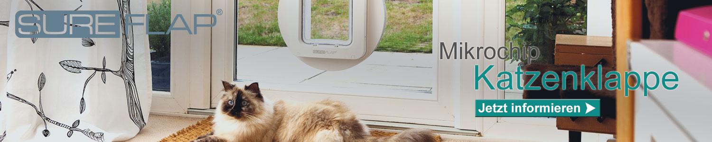 katzenshop katzenbedarf katzenzubeh r g nstig kaufen bei. Black Bedroom Furniture Sets. Home Design Ideas