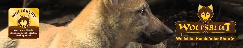 Wolfsblut Hundefutter Shop