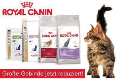 Royal Canin Katzenfutter günstig