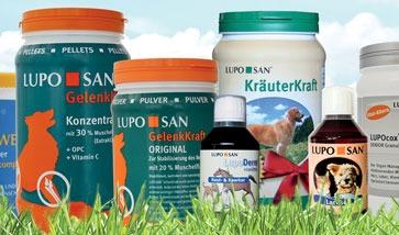 Nahrungsergänzungsmittel für Hunde