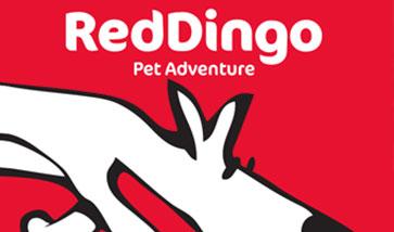 Red Dingo Shop