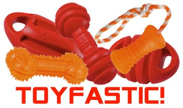 ToyFastic Hundespielzeug von KERBL