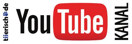 tiierisch.de YouTube Channel