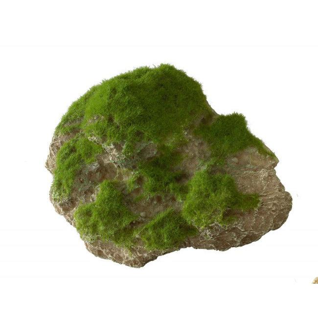 Aqua Della Moss Stone Stein mit Moos Bild 4