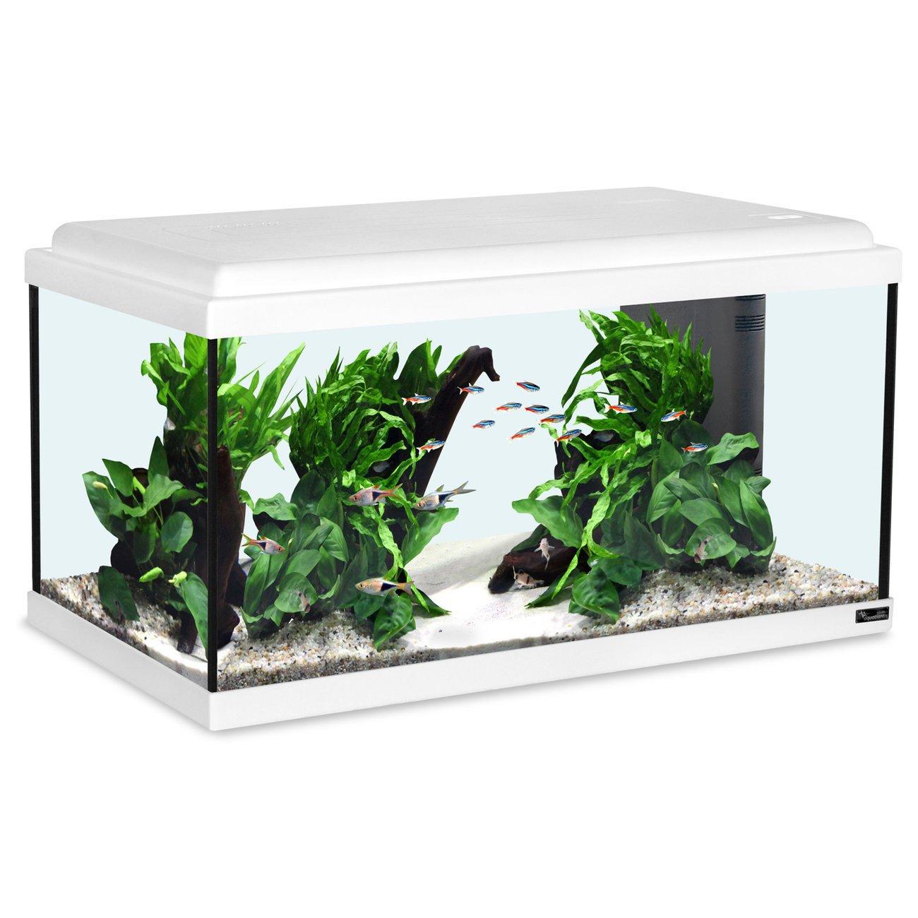 Aquatlantis Advance 60 LED Aquarium Bild 2