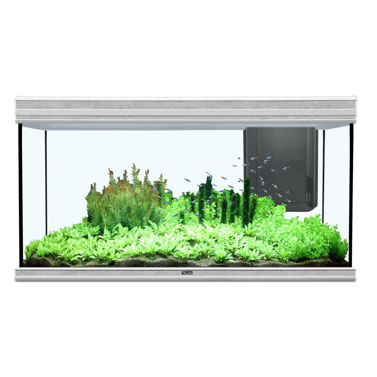 Aquatlantis Fusion 120x50cm Aquarium Bild 2