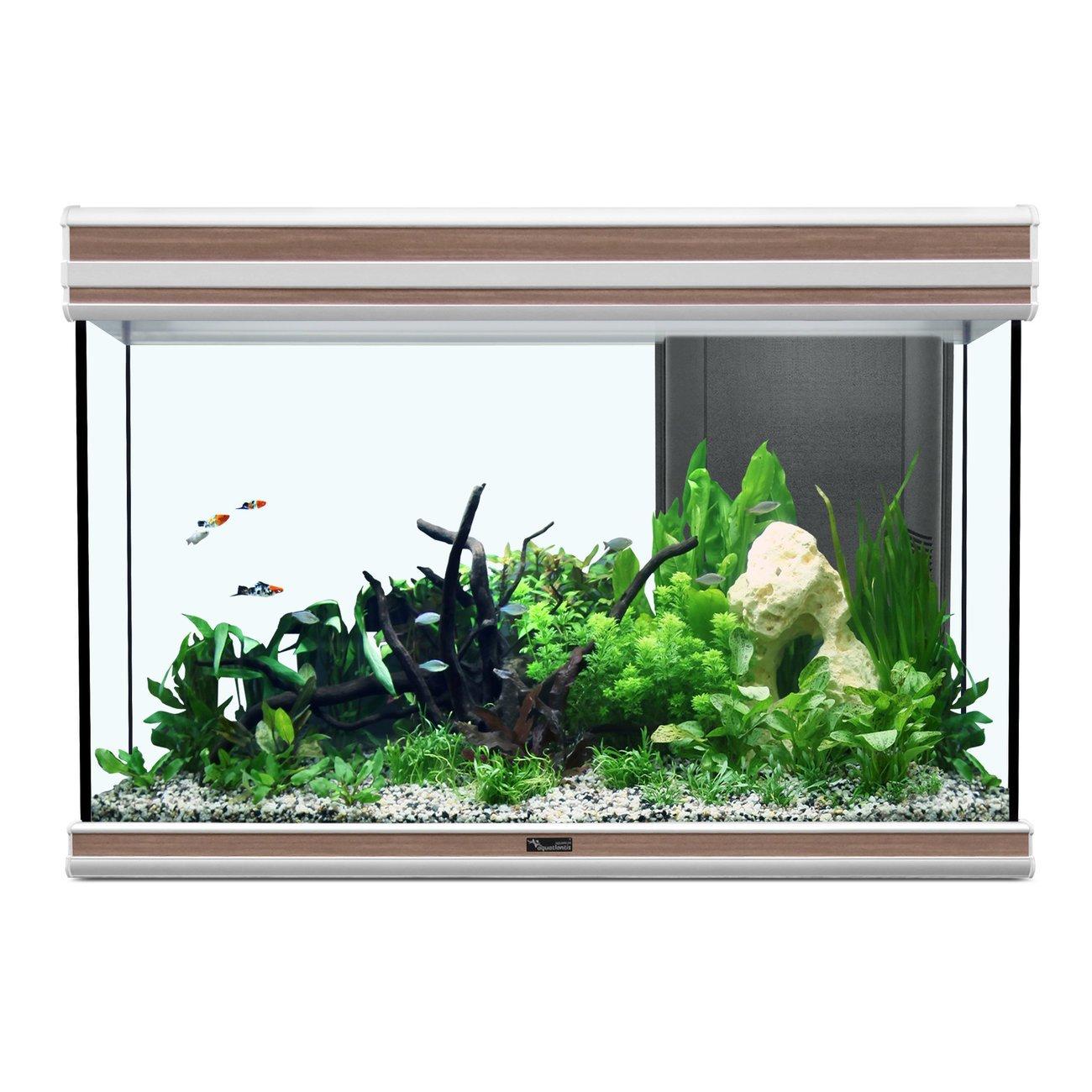 Aquatlantis Fusion 80 Aquarium Bild 3