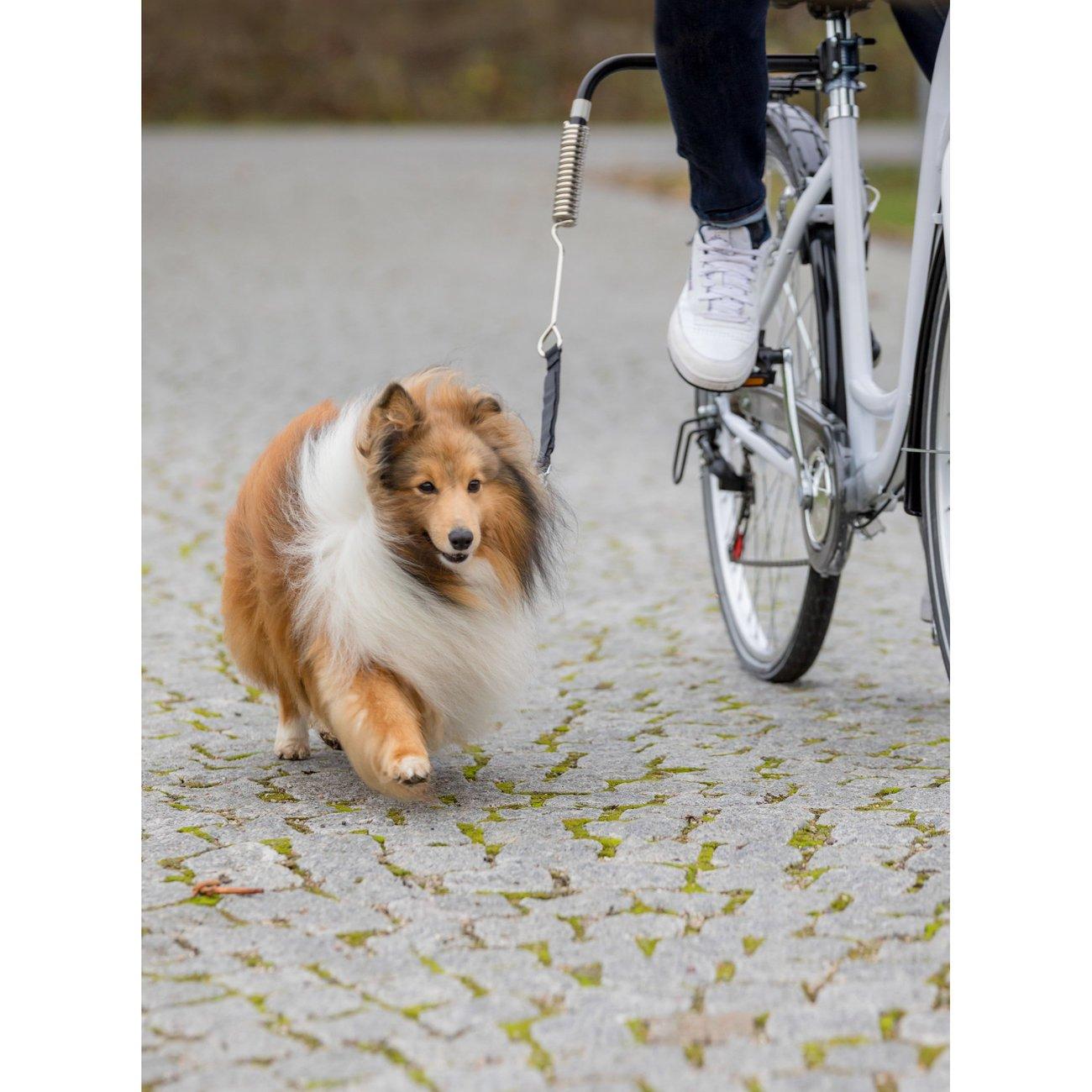 Biker-Set Hunde Abstandhalter für Fahrräder Bild 3