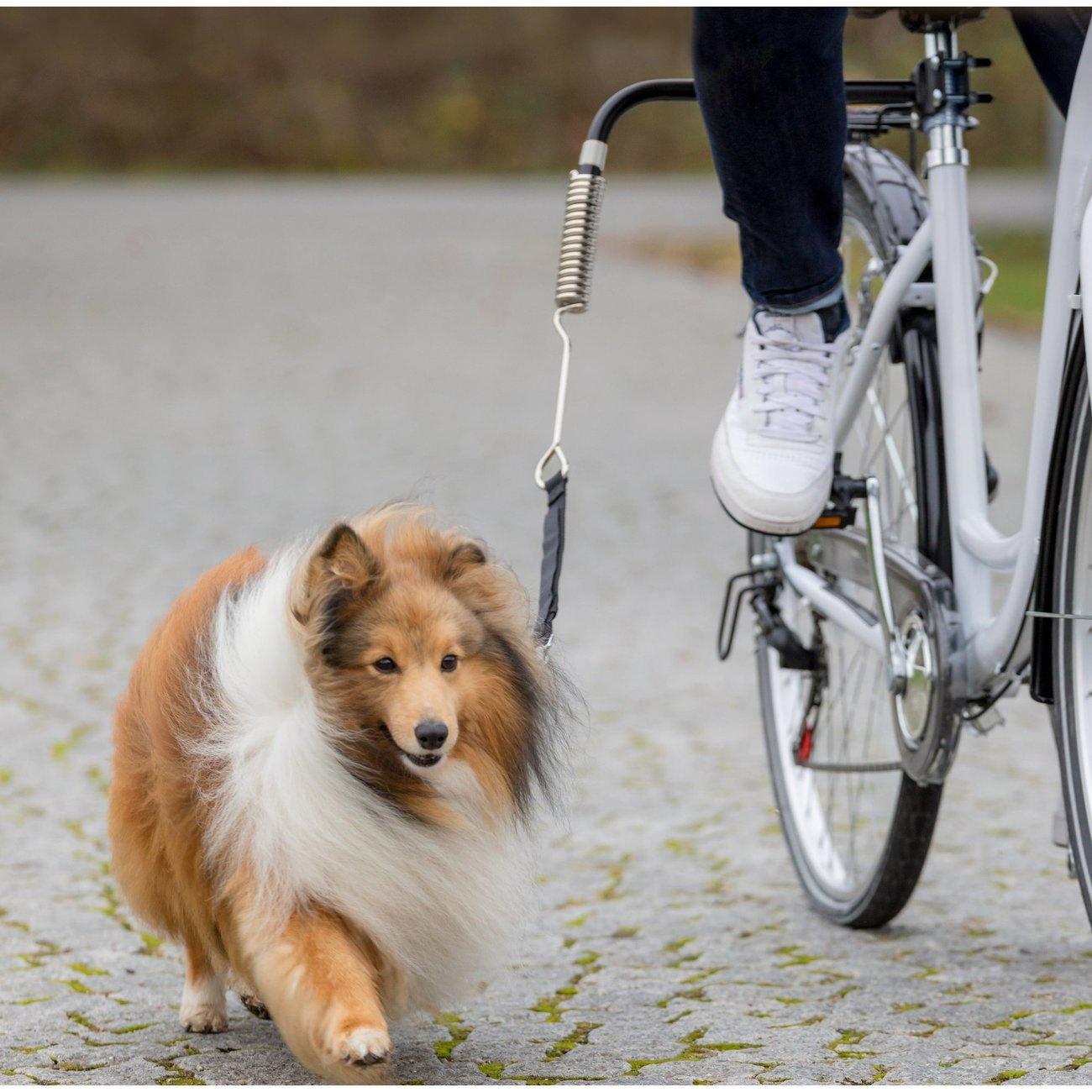 Biker-Set Hunde Abstandhalter für Fahrräder Bild 2