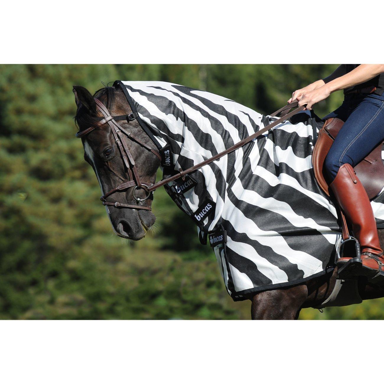 Buzz Off Riding Zebra Ausreitdecke Bild 4
