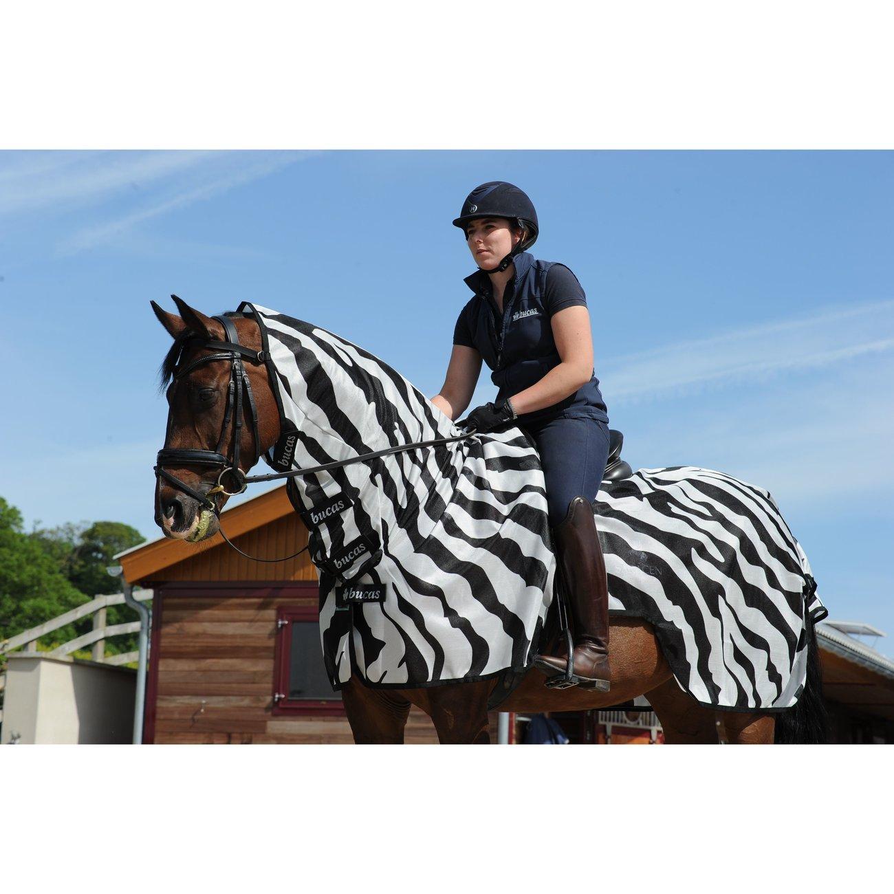 Buzz Off Riding Zebra Ausreitdecke Bild 6