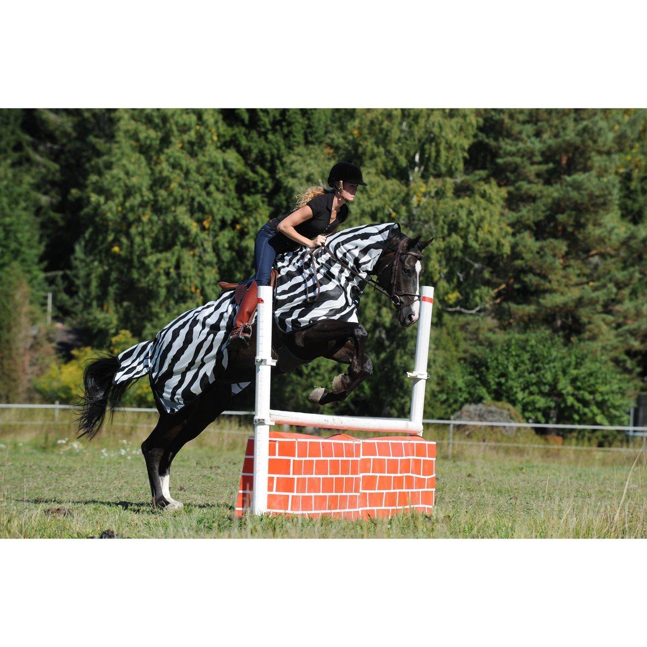 Buzz Off Riding Zebra Ausreitdecke Bild 2