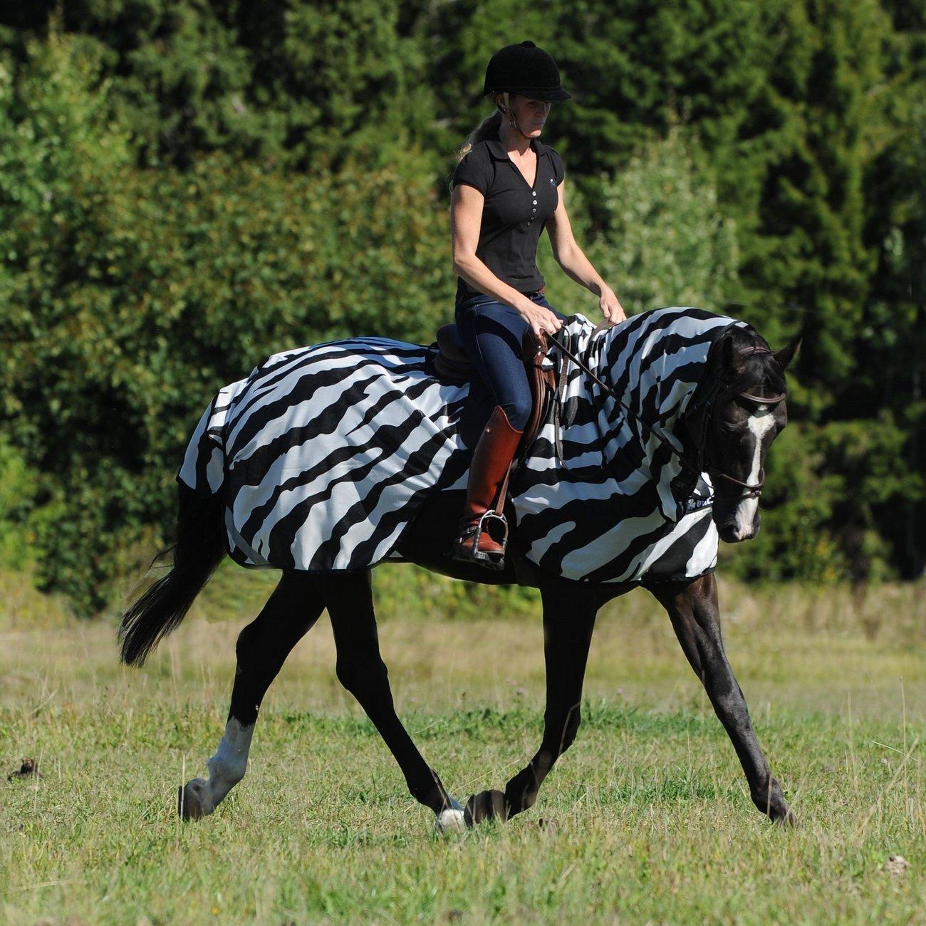 Buzz Off Riding Zebra Ausreitdecke Bild 7