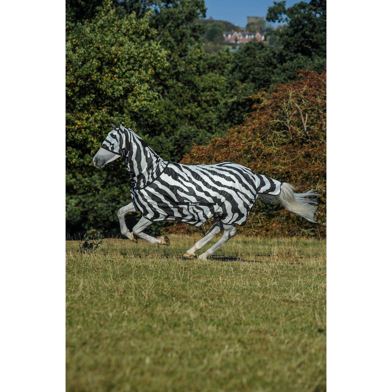 Bucas Fliegendecke Buzz Off Zebra Bild 2