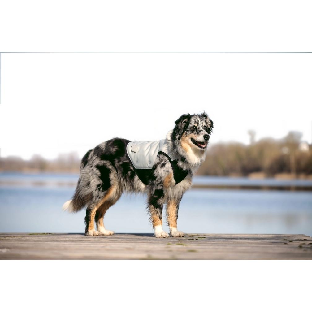Cani.Cool Kühlweste für Hunde Bild 2