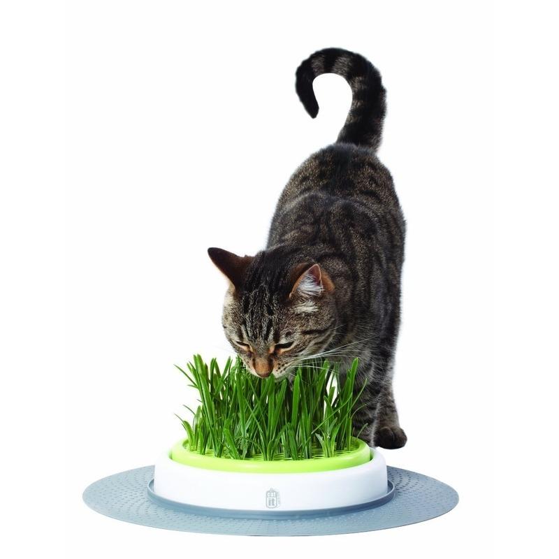 Catit Design Senses Gras-Garten-Set Katzengras Bild 2