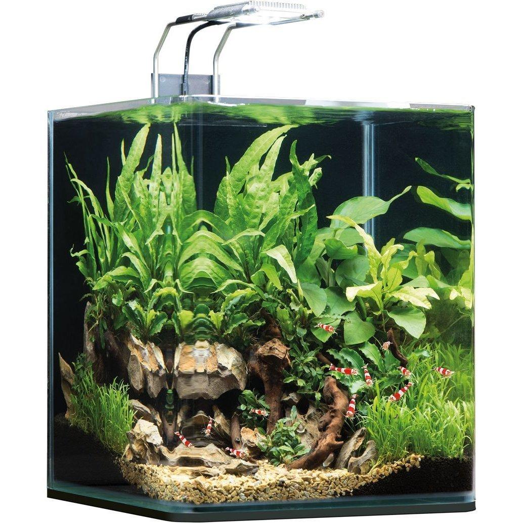 Dennerle NanoCube Aquarium Bild 3