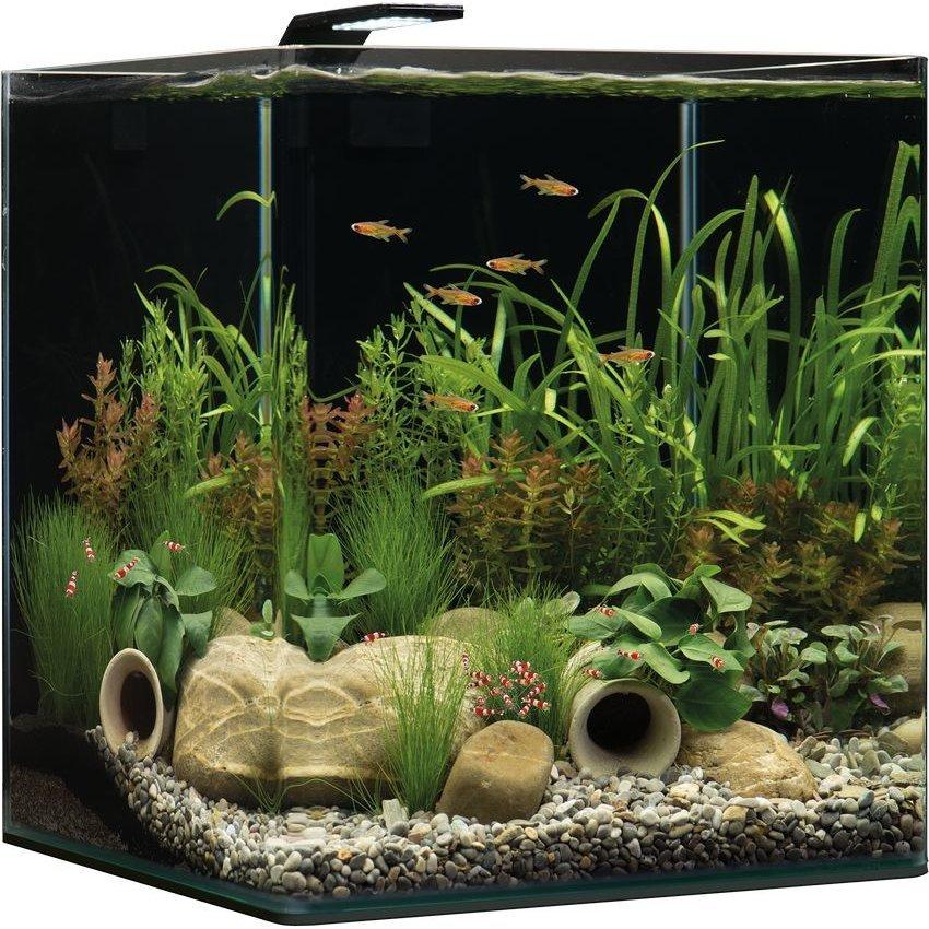 Dennerle NanoCube Aquarium Bild 7