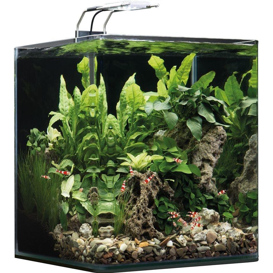 Dennerle NanoCube Aquarium Bild 5