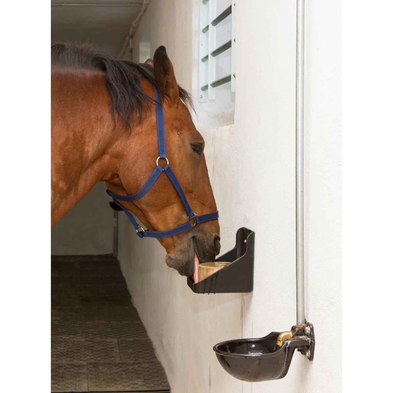 Kerbl Equisal Leckstein für Pferde Bild 2