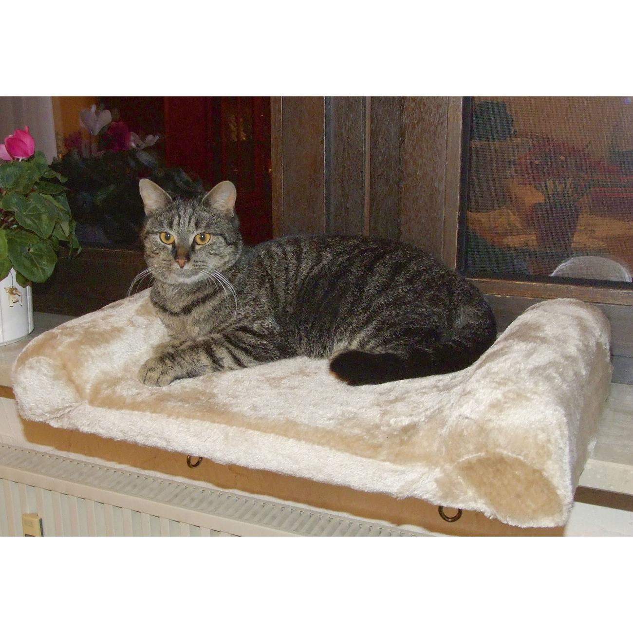 Fensterliegebrett für Katzen Bild 5