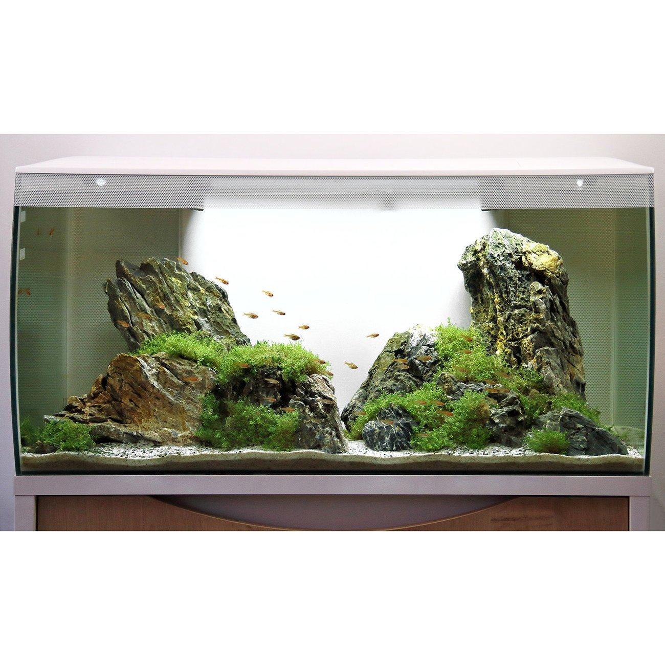 Fluval Flex 123 Liter Aquarium Bild 8