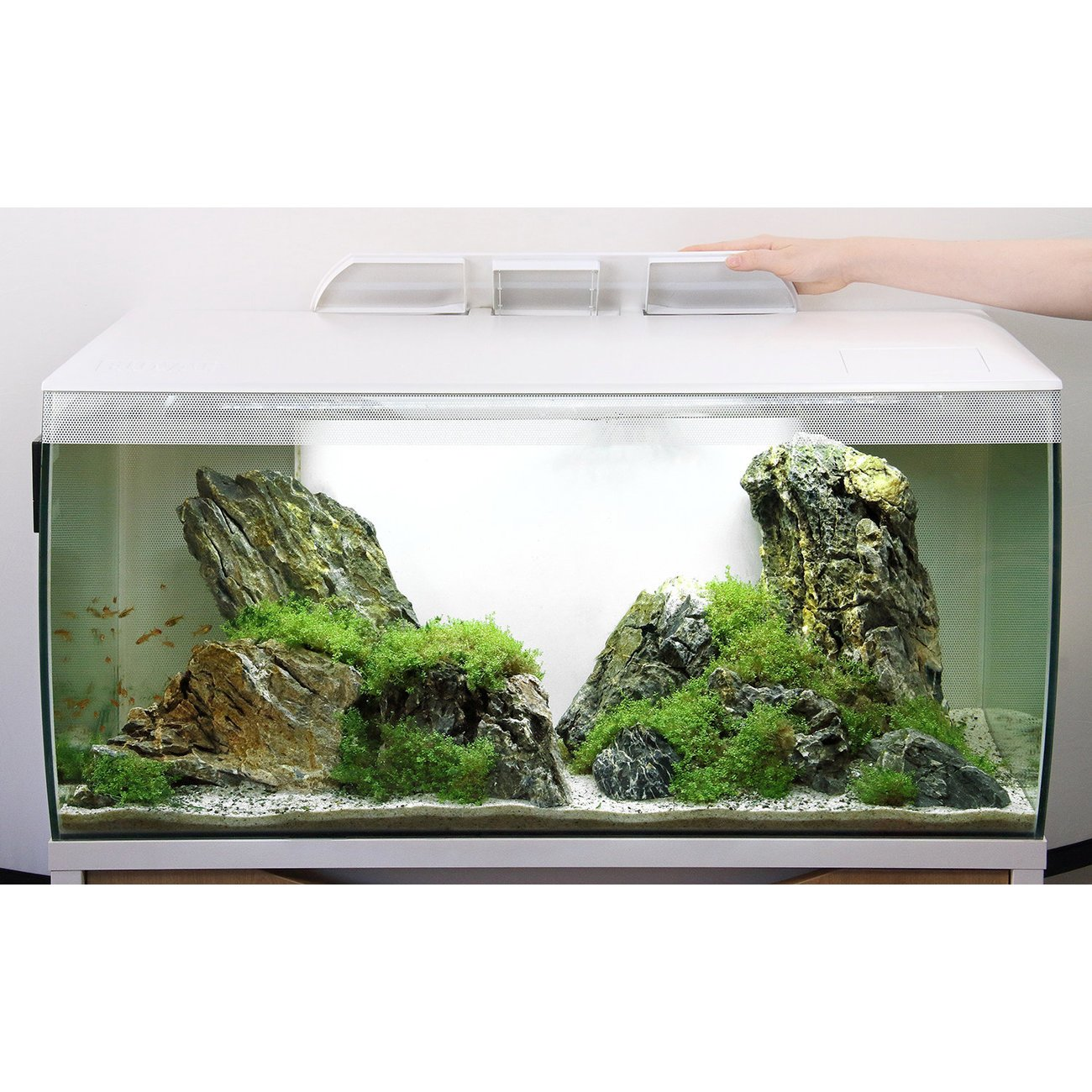 Fluval Flex 123 Liter Aquarium Bild 9