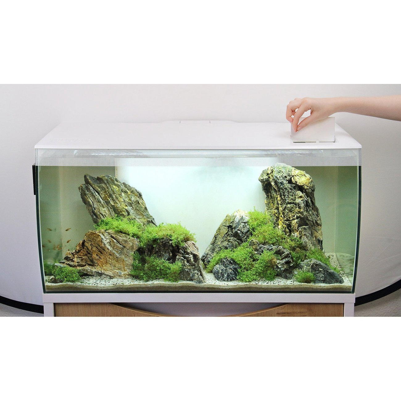 Fluval Flex 123 Liter Aquarium Bild 12