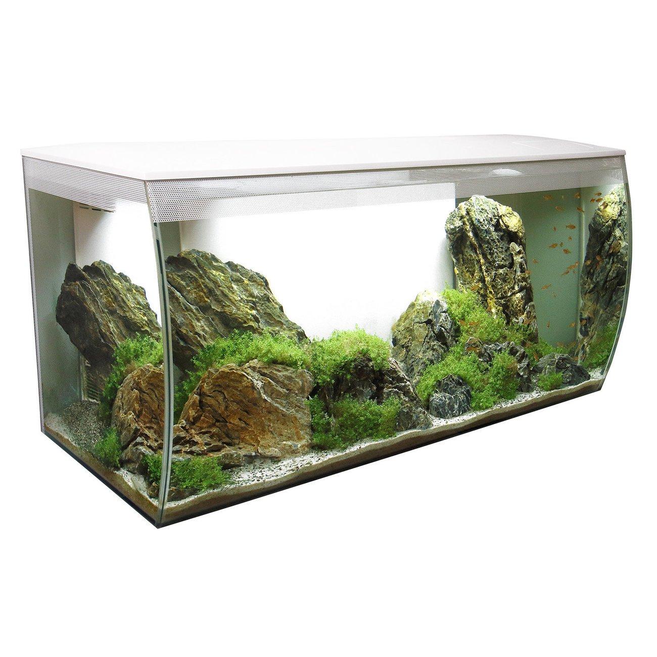 Fluval Flex 123 Liter Aquarium Bild 2