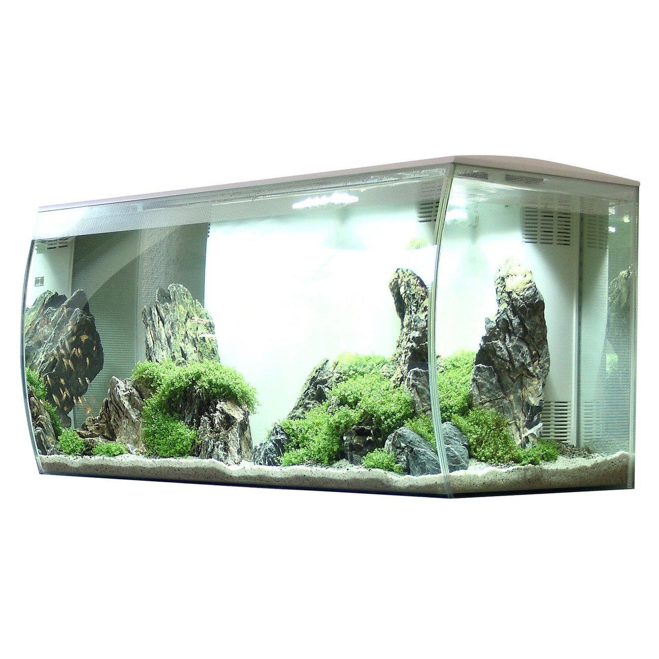 Fluval Flex 123 Liter Aquarium Bild 13