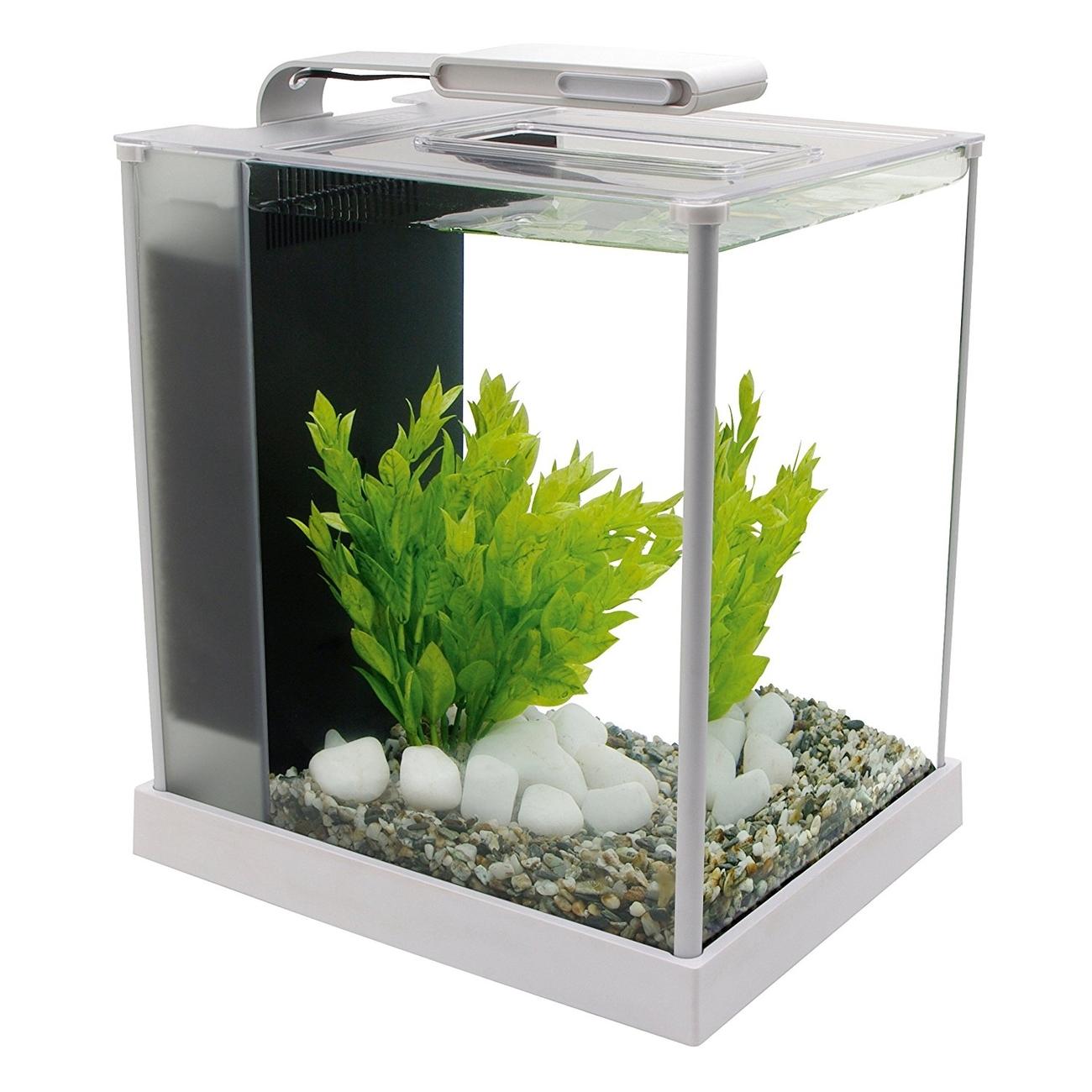 Fluval SPEC Süßwasser Aquarium Set Bild 4