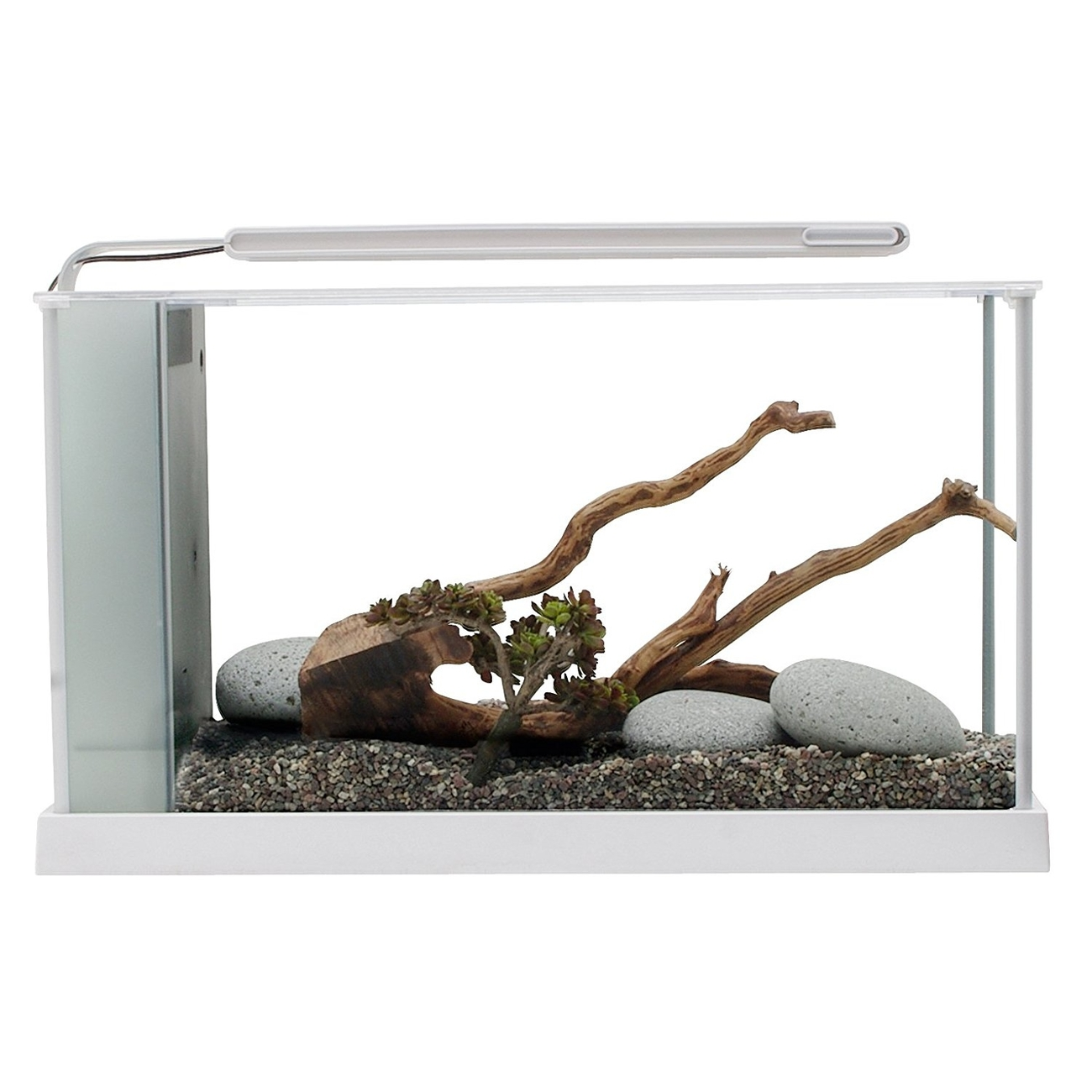 Fluval SPEC Süßwasser Aquarium Set Bild 5