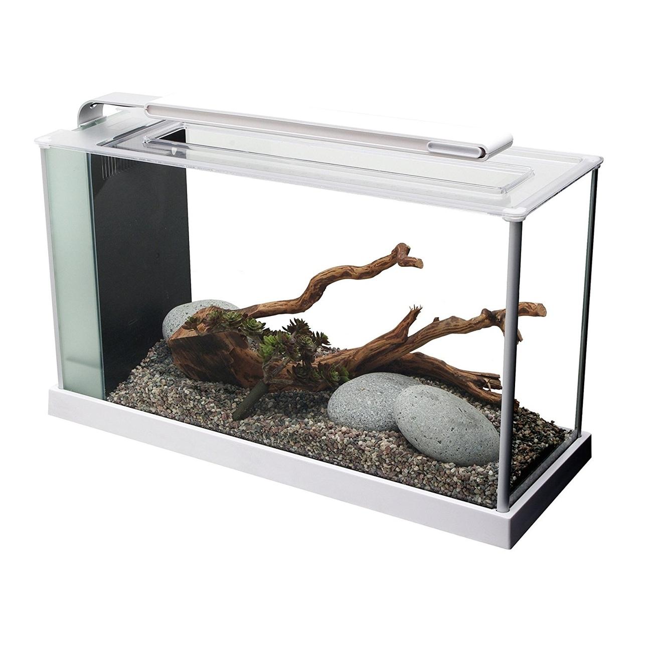 Fluval SPEC Süßwasser Aquarium Set Bild 7