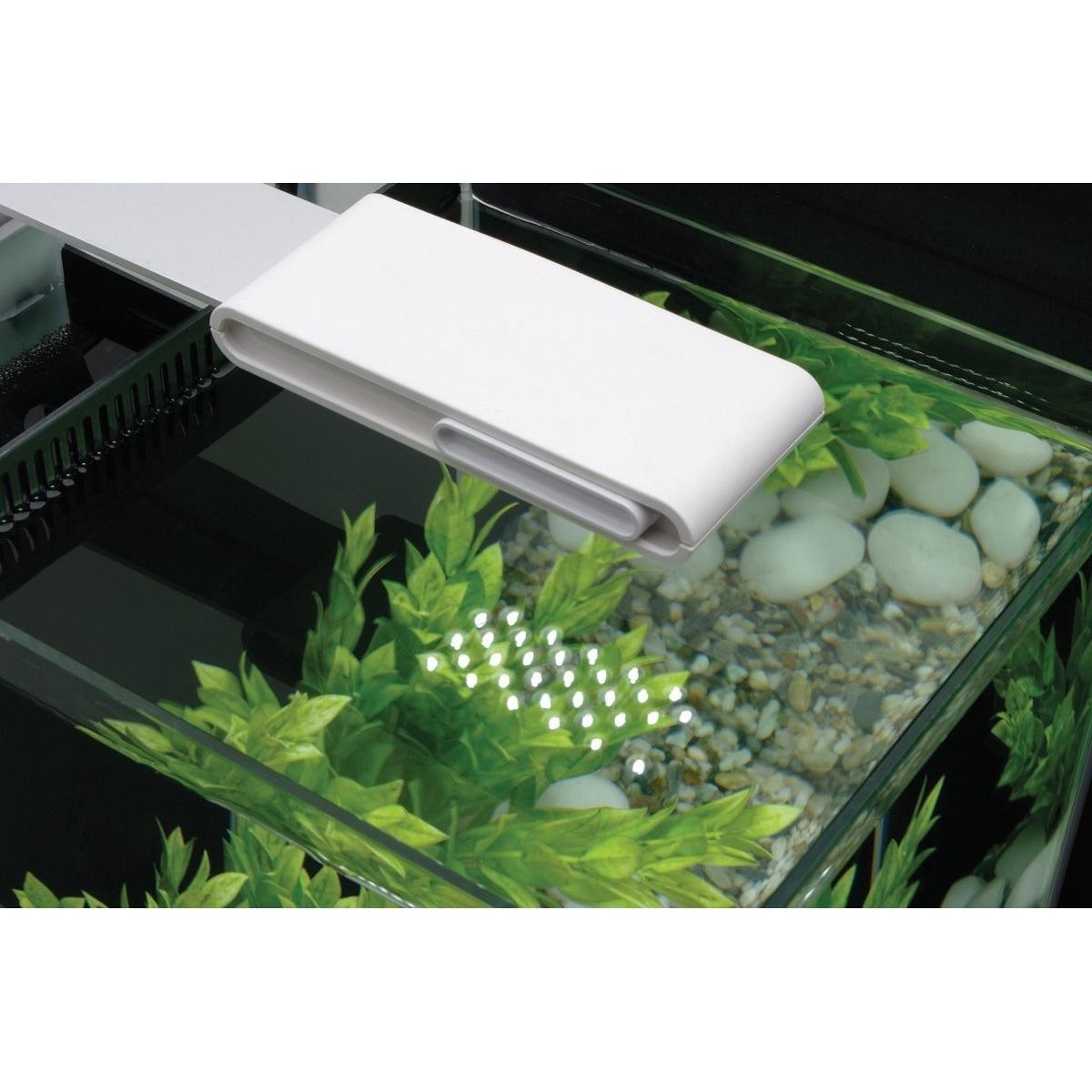 Fluval SPEC Süßwasser Aquarium Set Bild 6