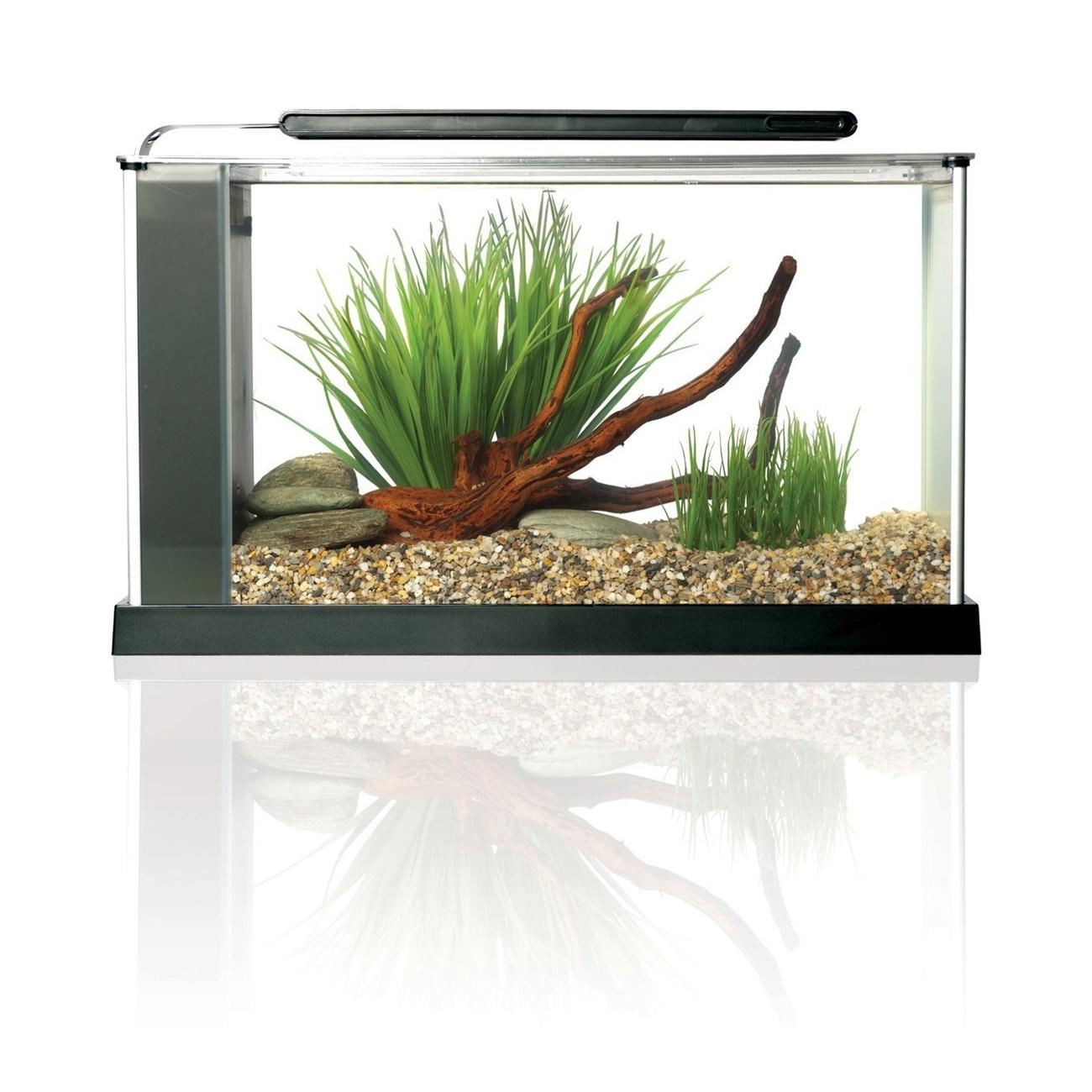 Fluval SPEC Süßwasser Aquarium Set Bild 10