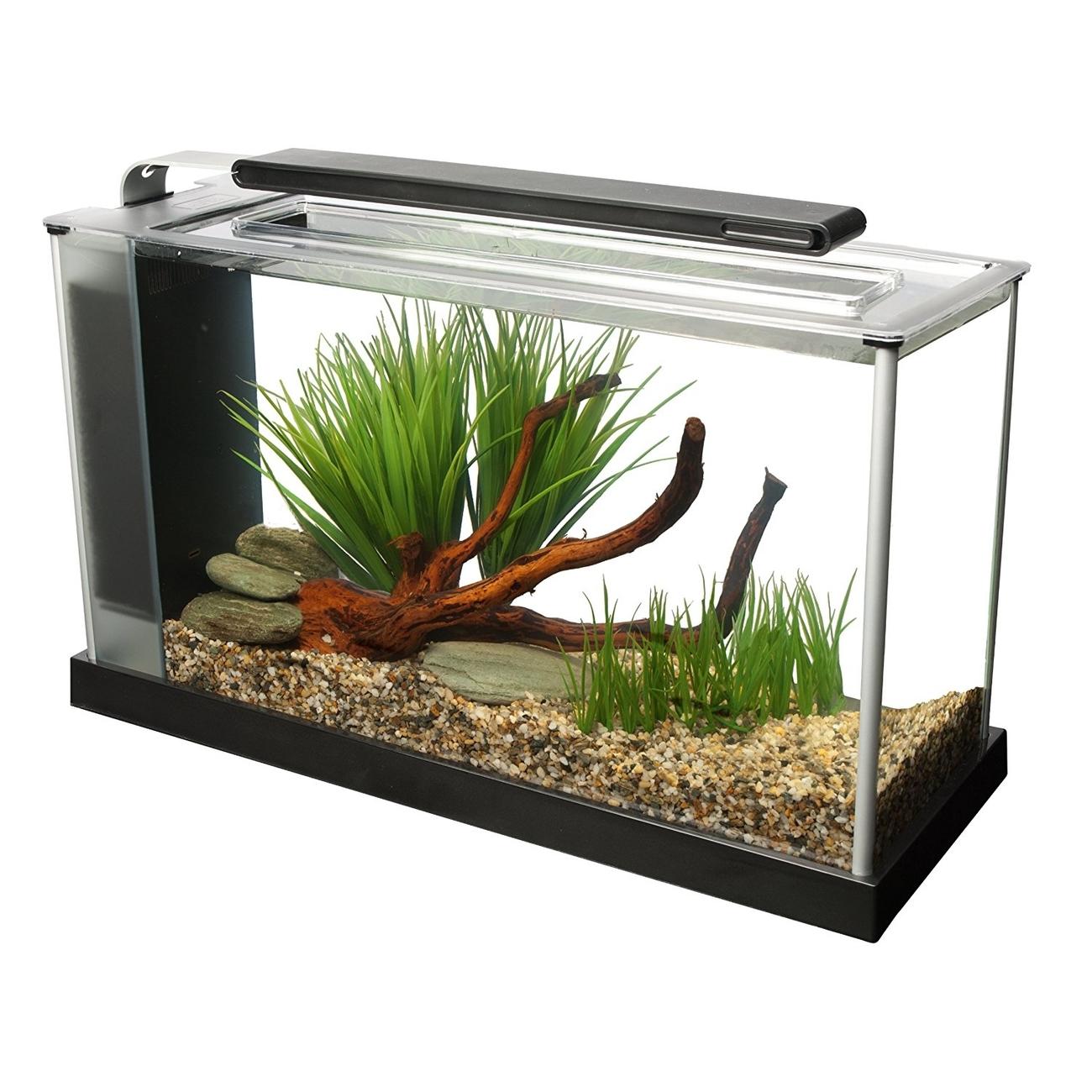 Fluval SPEC Süßwasser Aquarium Set Bild 11