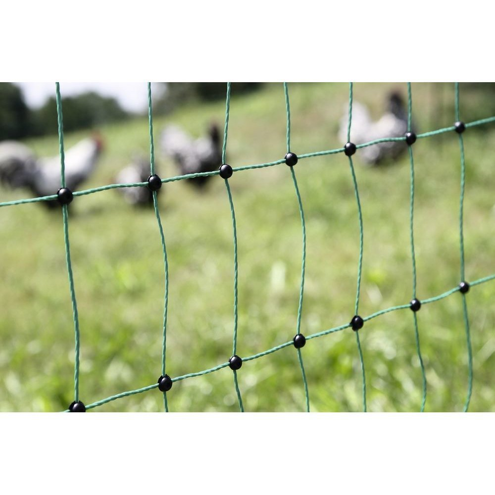 Geflügelnetz PoultryNet grün elektrifizierbar Bild 4