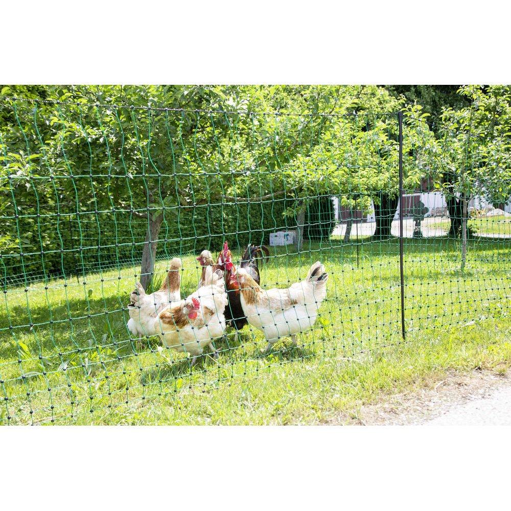Geflügelnetz PoultryNet grün elektrifizierbar Bild 13