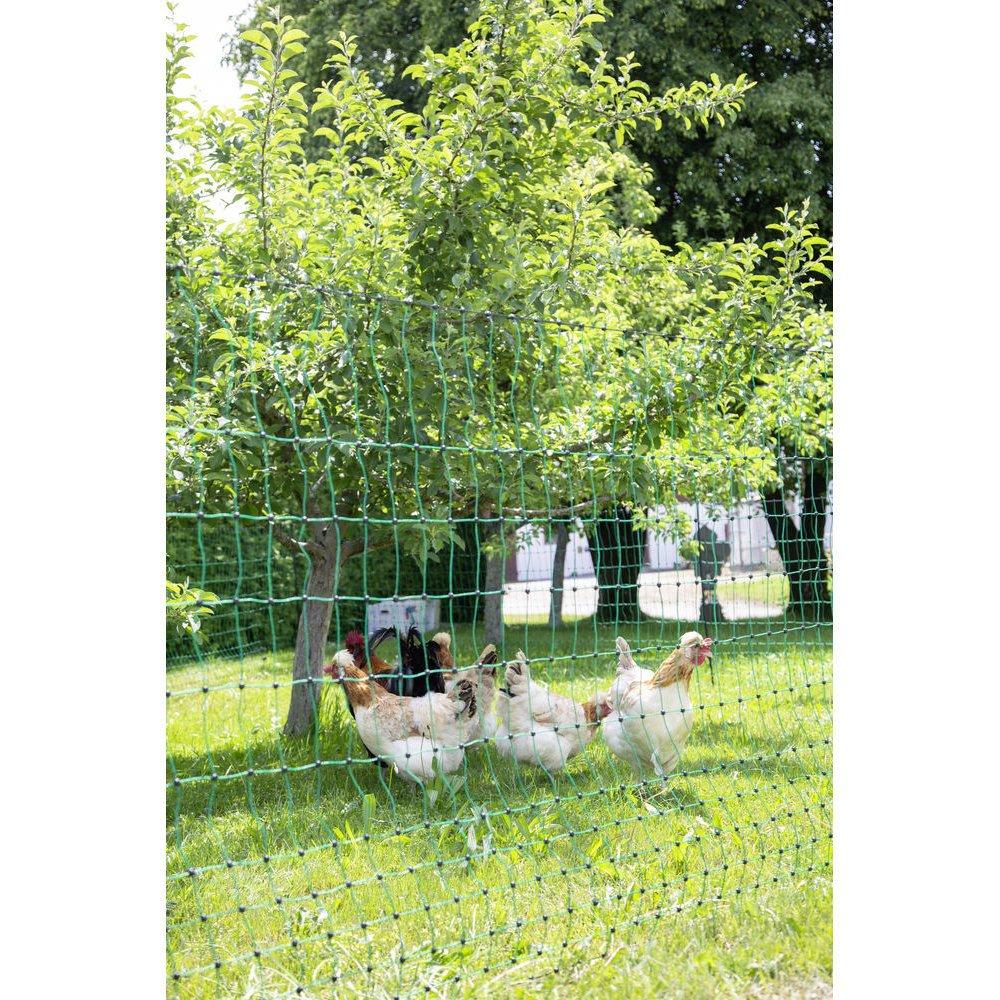 Geflügelnetz PoultryNet grün elektrifizierbar Bild 14